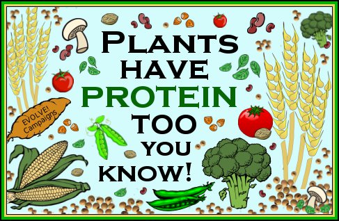protein-quotes-8